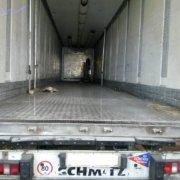 Фургоны — Транс-Мороз 58